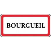 Bourgueil (3)