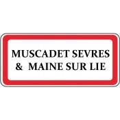 Muscadet Sèvres & Maine sur Lie (1)