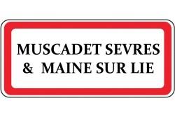 Muscadet Sèvres & Maine sur Lie